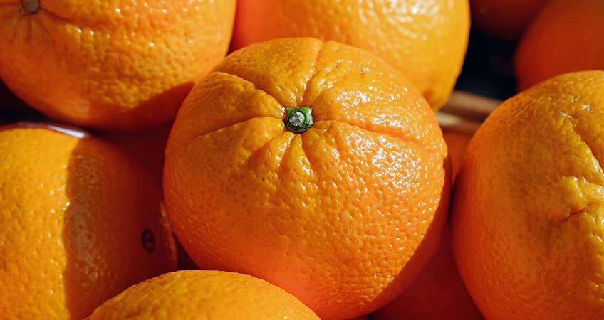 Citrus Export