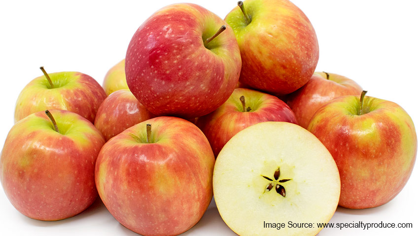 The effects of organic and inorganic mulches on the yield and fruit quality of 'Cripps' Pink' apple trees