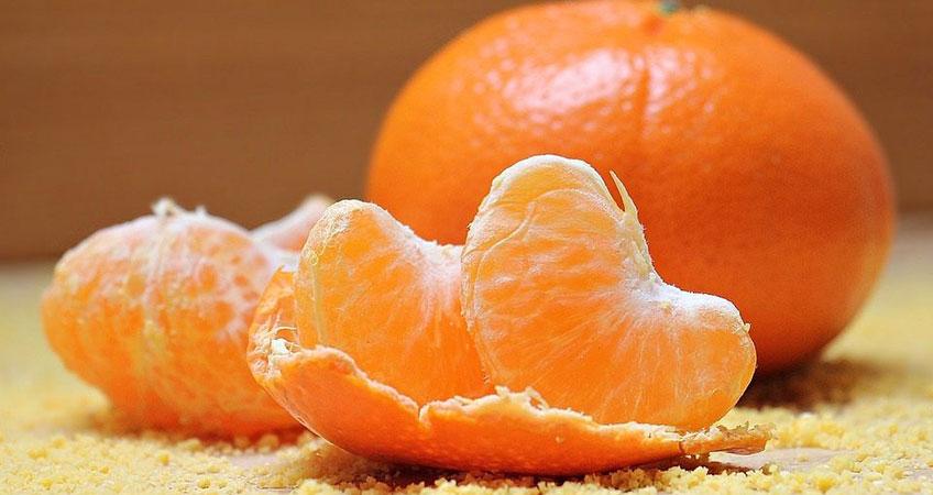Endulini Fruit introduces biological pest control in citrus