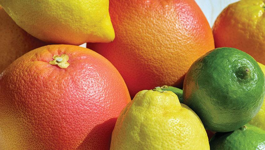 Citrus Improvement